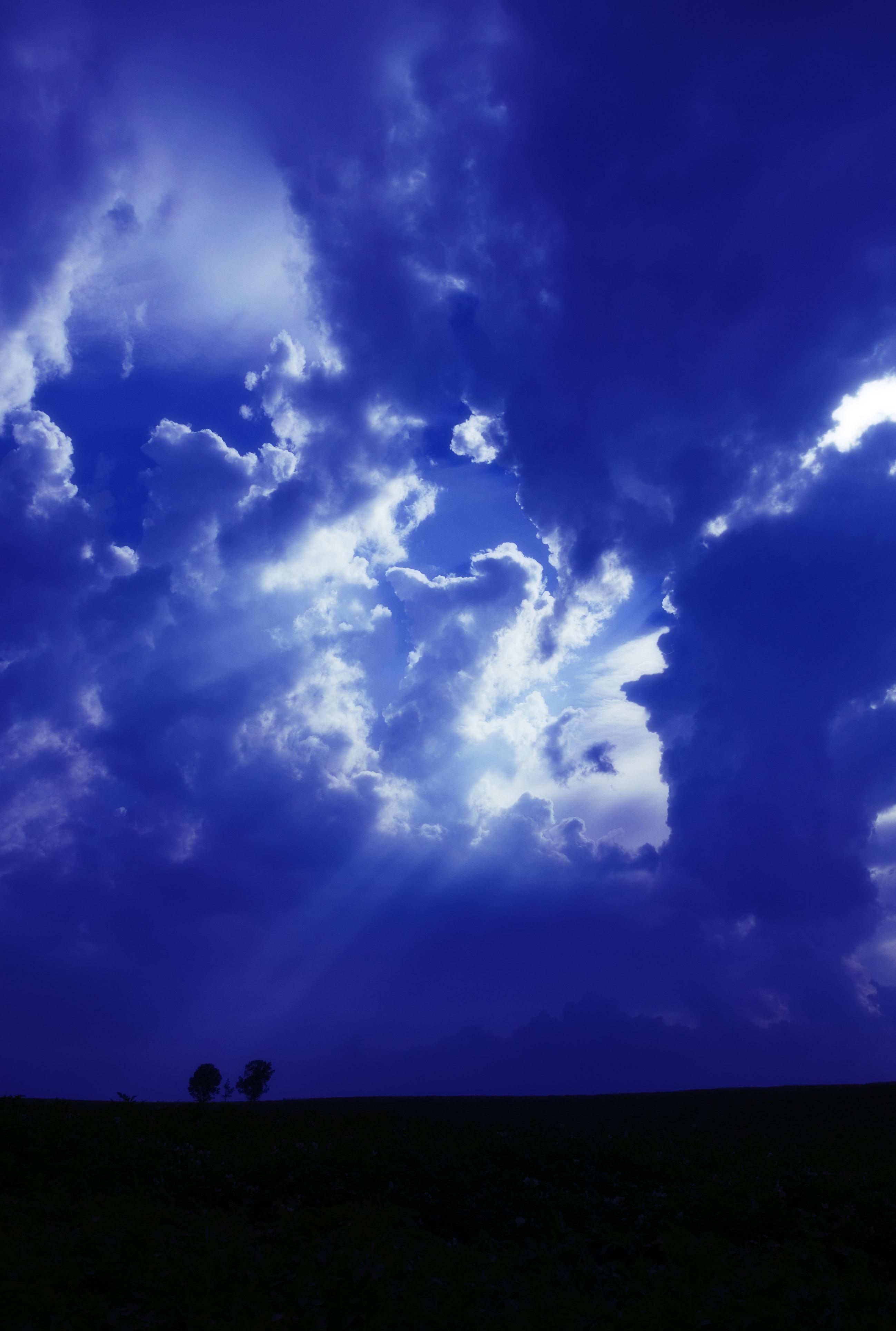 写真,素材,無料,フリー,フォト,クリエイティブ・コモンズ,風景,壁紙,福音の光, 雲, 光筋, 天の声, 並木