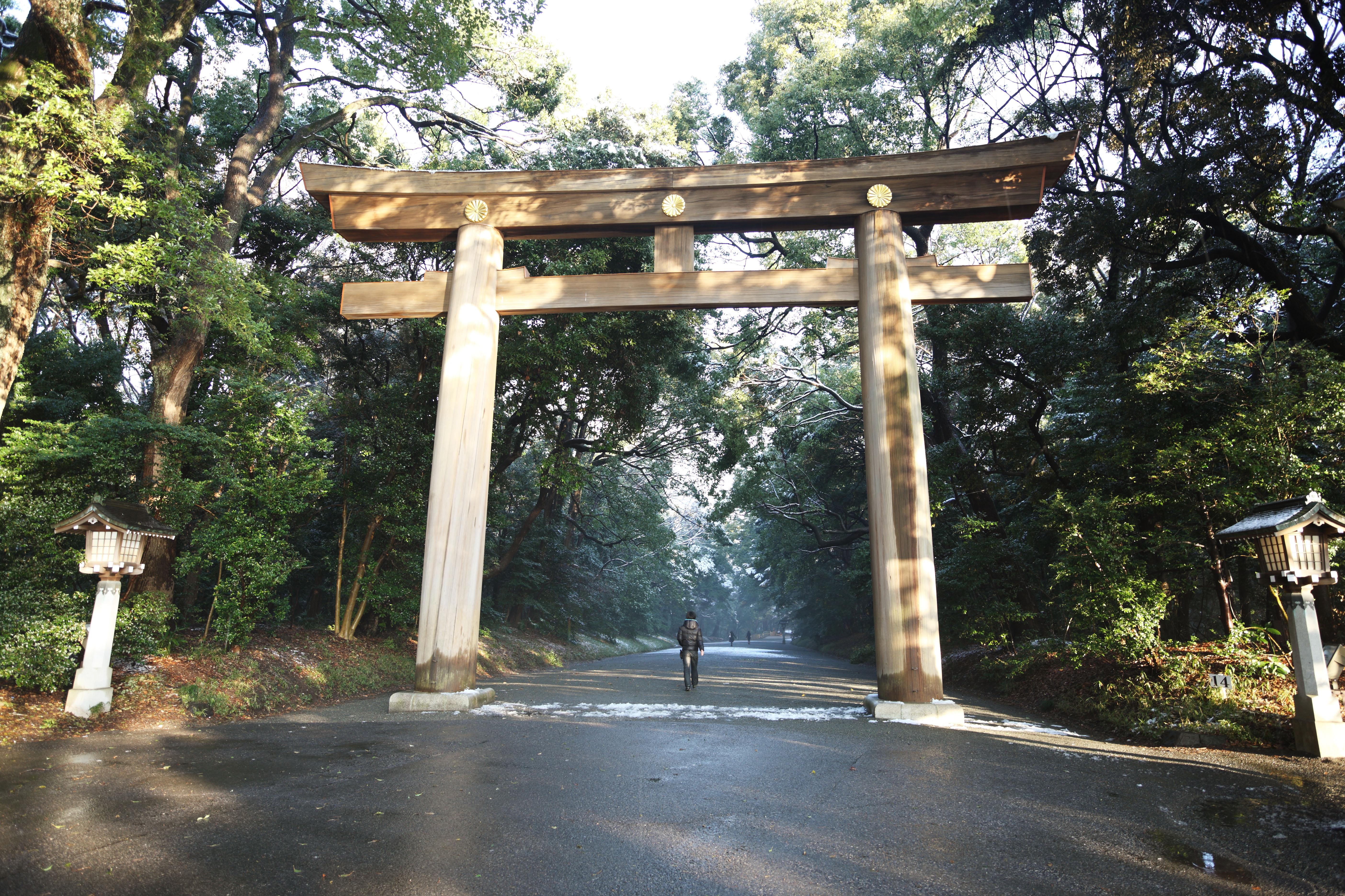 ゆんフリー写真素材集 No 9514 明治神宮 鳥居 日本 東京