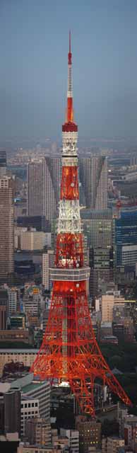 photo,material,free,landscape,picture,stock photo,Creative Commons,Tokyo Tower, Tokyo Tower, Building group, The downtown area, Red and white