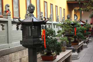 photo,material,free,landscape,picture,stock photo,Creative Commons,A ball temple, Chaitya, garden lantern, bonsai, Faith