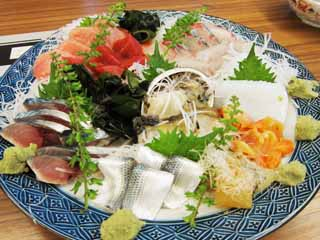 photo,material,free,landscape,picture,stock photo,Creative Commons,A sashimi helping of various kinds of dishes, cut mackerel sprinkled with salt and then pickled in vinegar, , An ark shell, abalone