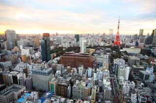 photo,material,free,landscape,picture,stock photo,Creative Commons,Tokyo panorama, building, The downtown area, Tokyo Tower, Toranomon