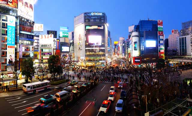 photo,material,free,landscape,picture,stock photo,Creative Commons,Shibuya free intersection, crowd, walker, bus, signboard