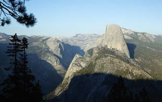 photo,material,free,landscape,picture,stock photo,Creative Commons,Half Dome, tree, Granite, forest, stone