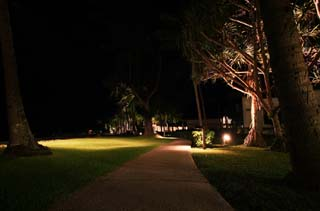 photo,material,free,landscape,picture,stock photo,Creative Commons,A narrow path of a resort, It is lighted up, southern country, lawn, tree
