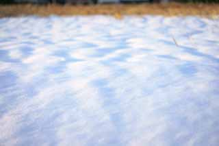 photo,material,free,landscape,picture,stock photo,Creative Commons,Snow Illusion, , , ,