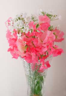 photo,material,free,landscape,picture,stock photo,Creative Commons,Flower arrangement of sweet pea, Pink, Sweet pea, sweet pea, petal