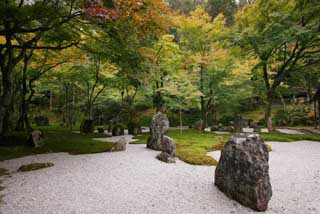 photo,material,free,landscape,picture,stock photo,Creative Commons,A garden of a light temple belonging to the Zen sect, garden, rock, sand bar, garden tree