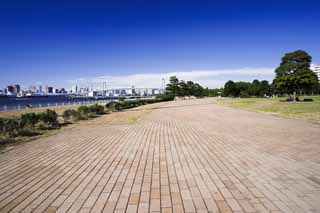 photo,material,free,landscape,picture,stock photo,Creative Commons,A brick way of the sea breeze Park, coastal line, Rainbow Bridge, lawn, blue sky