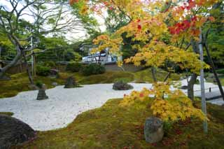 photo,material,free,landscape,picture,stock photo,Creative Commons,The House of encyclopedic knowledge of Matsushima, rock garden, rock, Maple, stone