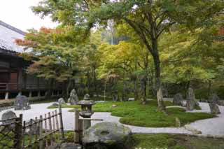 photo,material,free,landscape,picture,stock photo,Creative Commons,A garden of a light temple belonging to the Zen sect, Moss, stone lantern basket, rock, Colored leaves
