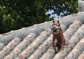 photo,material,free,landscape,picture,stock photo,Creative Commons,Sea Sir to bark, SeSir, good luck charm, Okinawa, roof