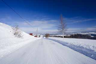 photo,material,free,landscape,picture,stock photo,Creative Commons,A snow-covered road straight line, Icy roads, blue sky, snowy field, It is snowy