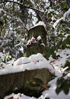 photo,material,free,landscape,picture,stock photo,Creative Commons,It is snowy to a guardian deity of children, stone statue, snowy field, Moss is raw,