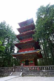 photo,material,free,landscape,picture,stock photo,Creative Commons,Five Storeyed Pagoda of Tosho-gu Shrine, Tosho-gu Shrine, Five Storeyed Pagoda, I am cinnabar red, world heritage