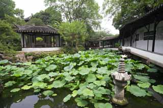 photo,material,free,landscape,picture,stock photo,Creative Commons,Hasuike of Zhuozhengyuan, pond, lotus, , garden