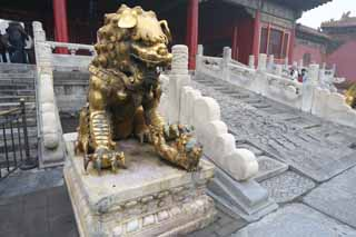 photo,material,free,landscape,picture,stock photo,Creative Commons,Forbidden City gold painted bronze lion statues, Lion, Female, Palace, Cradle