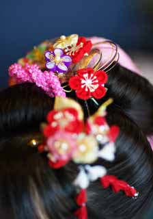 photo,material,free,landscape,picture,stock photo,Creative Commons,Shichi-Go-San hair ornaments, , Hair, Japanese binding, Girl