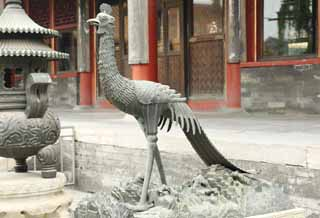 photo,material,free,landscape,picture,stock photo,Creative Commons,The bronze statue of the Chinese phoenix, bird, Chinese phoenix, tail feather, The empress