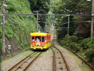 photo,material,free,landscape,picture,stock photo,Creative Commons,The orbit of the Mt. Takao cable car, track, mountain climbing visitor, Hiking, An excursion