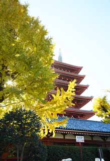 photo,material,free,landscape,picture,stock photo,Creative Commons,Senso-ji Temple Five Storeyed Pagoda, Chaitya, Senso-ji Temple, Asakusa, I am painted in red