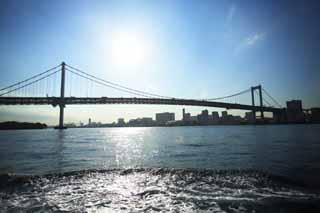 photo,material,free,landscape,picture,stock photo,Creative Commons,Rainbow Bridge, bridge, drive course, An oyster bird, seaside newly developed city center