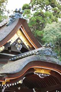 photo,material,free,landscape,picture,stock photo,Creative Commons,Omiwa shrine main shrine, Shinto, Prevention against evil, Precincts, Worship