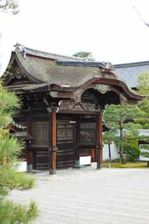 photo,material,free,landscape,picture,stock photo,Creative Commons,Ninna-ji Temple gate for Imperial messengers, Openwork, I am luxurious, wooden building, Tang grass
