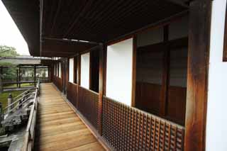 photo,material,free,landscape,picture,stock photo,Creative Commons,Ninna-ji Temple Shin-den, shoji, wooden building, Under the eaves, corridor