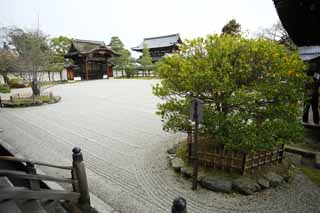 photo,material,free,landscape,picture,stock photo,Creative Commons,Ninna-ji Temple front yard of the Hall for state ceremonies, garden, Sand, gate for Imperial messengers, dry landscape Japanese garden