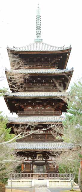 photo,material,free,landscape,picture,stock photo,Creative Commons,Ninna-ji Temple Five Storeyed Pagoda, ridge-end tile, Sanskrit characters, Chaitya, world heritage