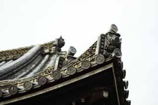 photo,material,free,landscape,picture,stock photo,Creative Commons,Ninna-ji Temple Kannondo, Japanese architectural style, roof tile, Chaitya, world heritage