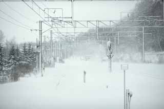 photo,material,free,landscape,picture,stock photo,Creative Commons,The menace of the snowstorm, It is cold, I am cold, snowstorm, Heavy snowfall