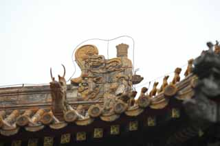 photo,material,free,landscape,picture,stock photo,Creative Commons,A Yonghe Temple tile, Tibet, An animal, dragon, Chaitya