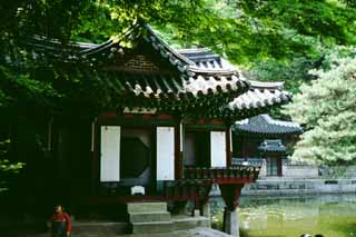 photo,material,free,landscape,picture,stock photo,Creative Commons,Puyongjong Pavilion, palace, pond, ,