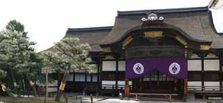 photo,material,free,landscape,picture,stock photo,Creative Commons,West Honganji two mighty rivals, Honganji, Chaitya, Shinran, wooden building