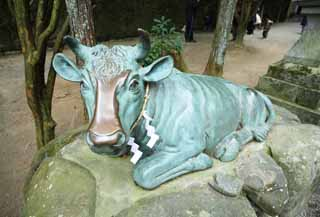 photo,material,free,landscape,picture,stock photo,Creative Commons,Ishigami major shrine cow image, The Japanese Chronicle of Japan, description of folk history, The Ox, bronze statue