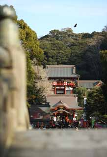 photo,material,free,landscape,picture,stock photo,Creative Commons,Hachiman-gu Shrine Hongu, , An upper shrine, main shrine,