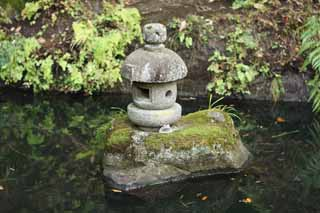 photo,material,free,landscape,picture,stock photo,Creative Commons,Zeniarai-benten Shrine stone lantern, stone lantern, frog, Wife of chief zen-priest, Money-making