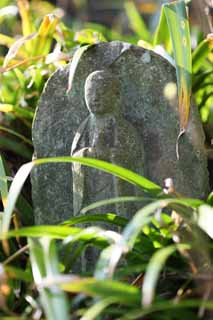 photo,material,free,landscape,picture,stock photo,Creative Commons,Hase-dera Temple Ishibotoke, stone statue, Grass, Buddhism, Chaitya