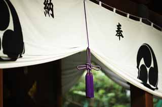 photo,material,free,landscape,picture,stock photo,Creative Commons,Hikawa Shrine curtain, Tomoe, Dedication, bunch, Shinto shrine