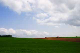 photo,material,free,landscape,picture,stock photo,Creative Commons,Pasture and cloud, pasture, hut, blue sky, cloud