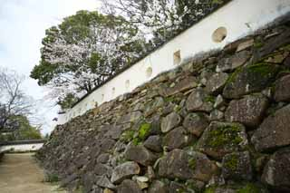 photo,material,free,landscape,picture,stock photo,Creative Commons,Okayama-jo Castle castle wall, castle, Ishigaki, Crow Castle,