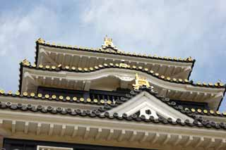 photo,material,free,landscape,picture,stock photo,Creative Commons,Okayama-jo Castle, castle, The castle tower, Crow Castle,