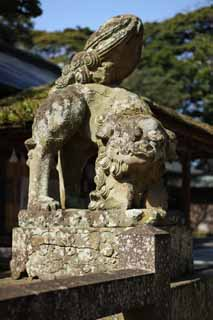 photo,material,free,landscape,picture,stock photo,Creative Commons,Matsue-jo Castle pair of stone guardian dogs, Shinto shrine, top dog, Shinto, stone statue