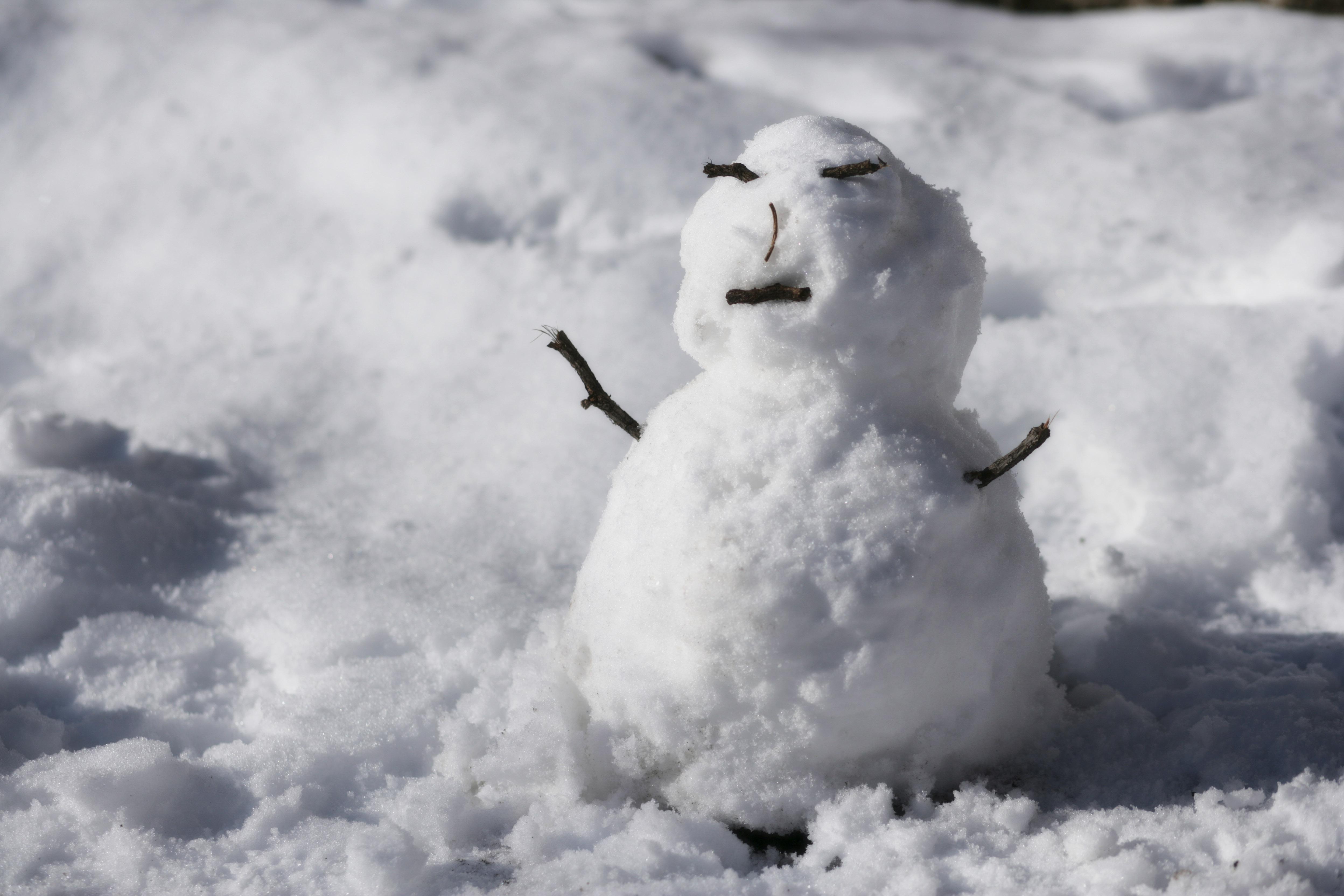 ゆんフリー写真素材集 No 3323 雪だるまの喜び 日本 東京